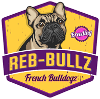 Reb-bullz French Bulldog Breeder | Puppies For Sale